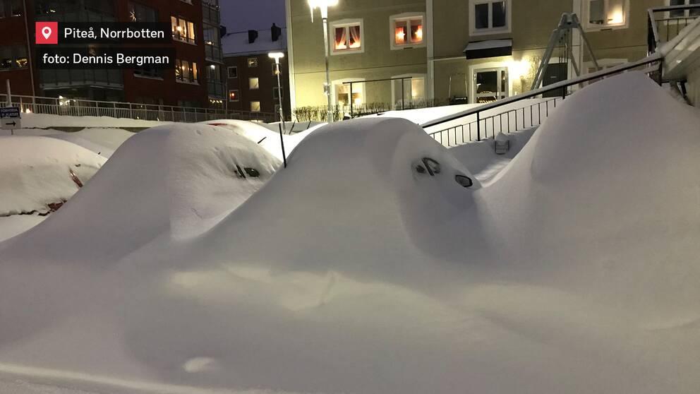 """""""–Vad hade du för färg på bilen sa du?"""" Svårt att se vilken bil som är vilken när det ligger så mycket snö som i Piteå i Norrbotten den 13 januari."""