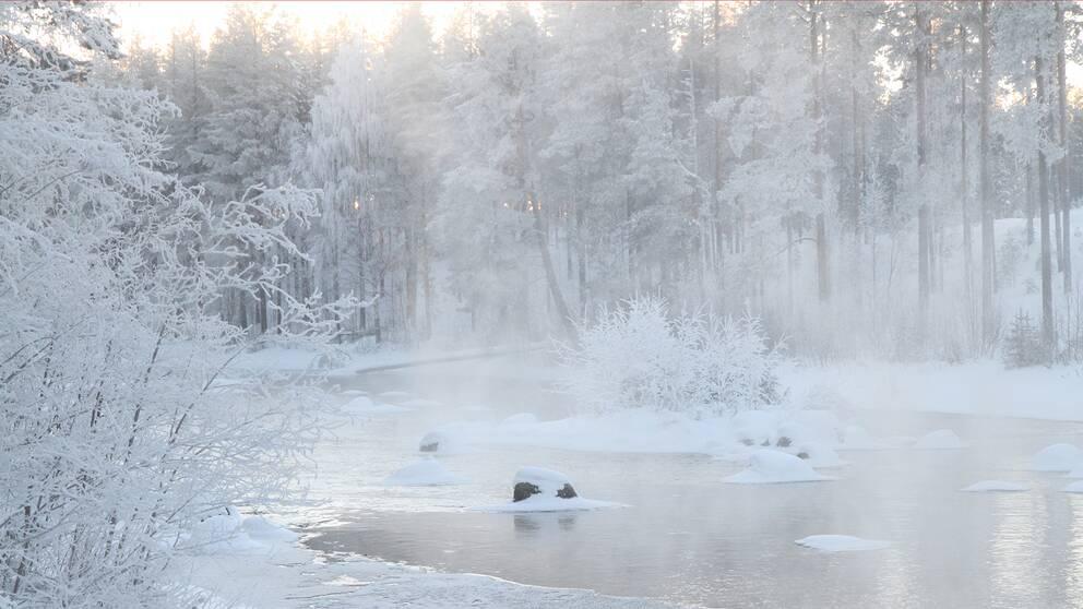 Minus 17 grader lunchtid lördag i Lycksele, Lappland. Det stiger ändå upp ånga från det öppna vattnet i Lycksbäcken utanför Lycksele.