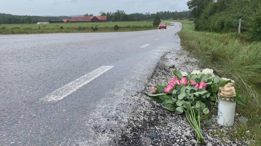 Blommor längs vägen i Slättåkra.
