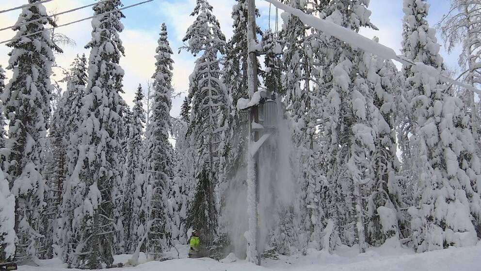Röjning av elledningar efter snöoväder.