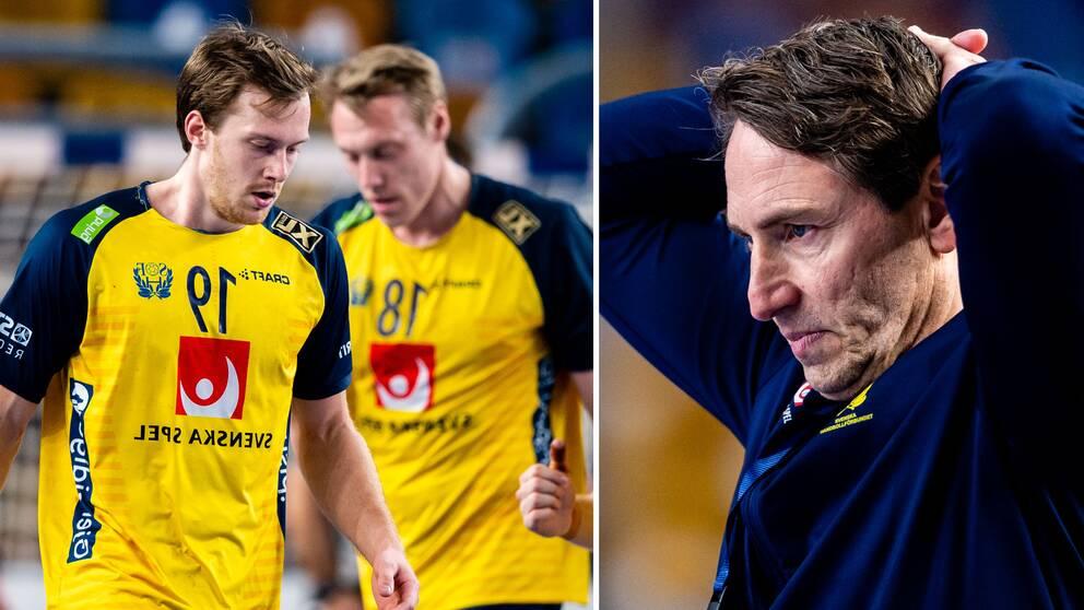 Sverige förlorade VM-finalen mot Danmark.
