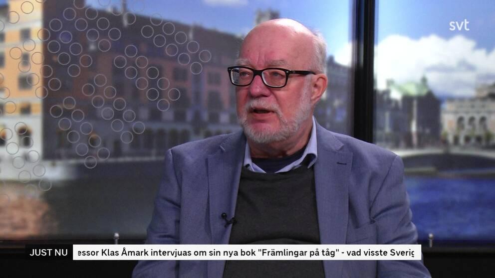 Professor Klas Åmark
