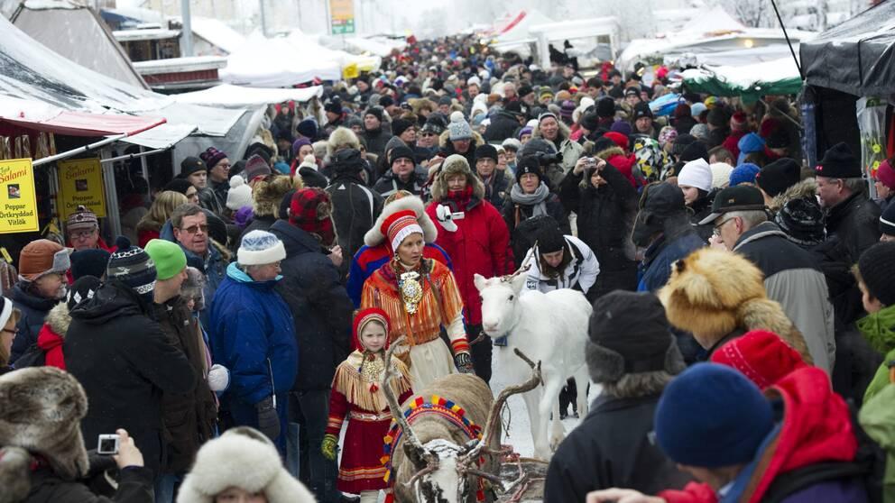 Jokkmokks marknad. Fullt av människor och en vit ren.