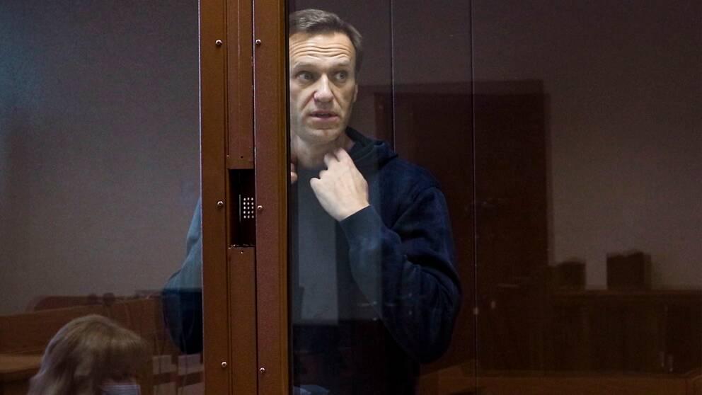 Ryske oppostionspolitikern Aleksej Navalnyj.