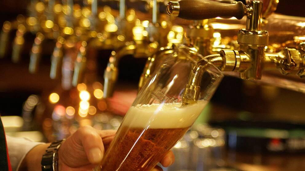 vad kostar en öl i krakow