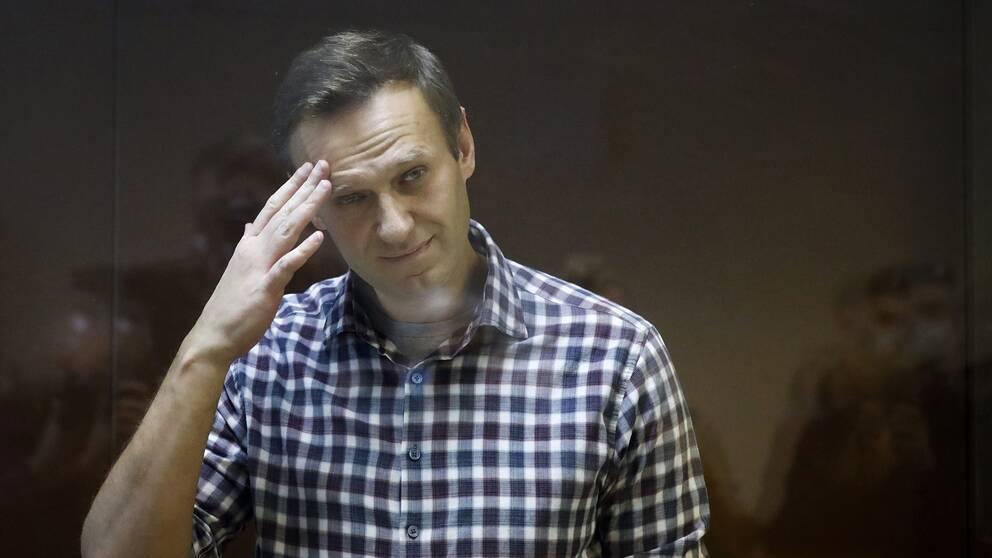 Den ryska oppositionspolitikern Aleksej Navalnyj