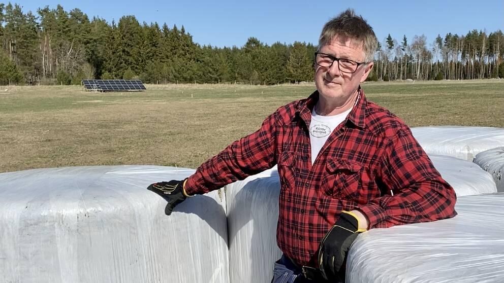 Ett unikt projekt sätts just nu upp på Ulf Anderssons gård i Kärrbo utanför Västerås. Odling och solceller på samma mark.
