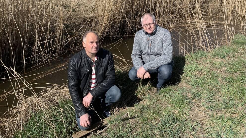 Jan Henrik Sönnemark och Lars Jönsson äger mark länge Trönningebäcken. Jan Henrik brukar ge vattnet till sina djur och Lars använder det för bevattning av grödor. När de fick reda på att bäcken innehåller PFAS slutade de omedelbart.