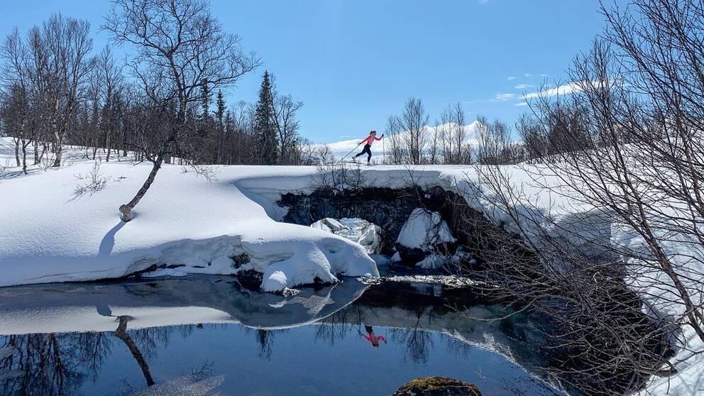 En majhälsning från Jämtland, i närheten av Skalstugan, längs St:Olavsleden några kilometer från norska gränsen.