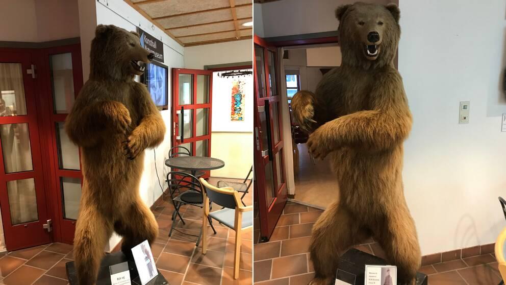 två bilder på en uppstoppad björn som står på bakbenen i foajén till Rättviks kulturhus