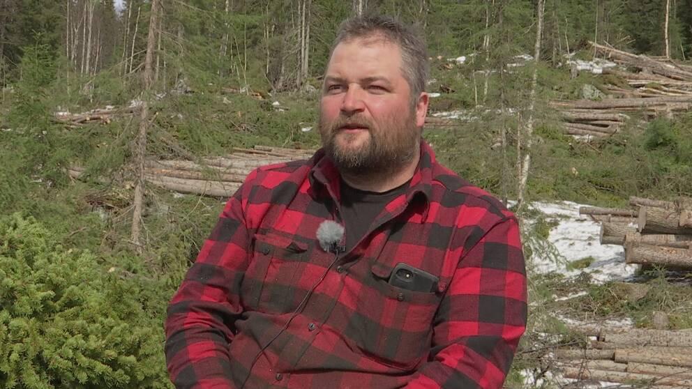 en man i rutig flanellskjorta framför ett skogshygge