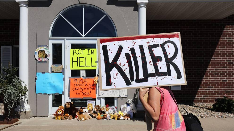 Plakat och gosedjurslejon utanför tandläkarens mottagning i Minnesota.