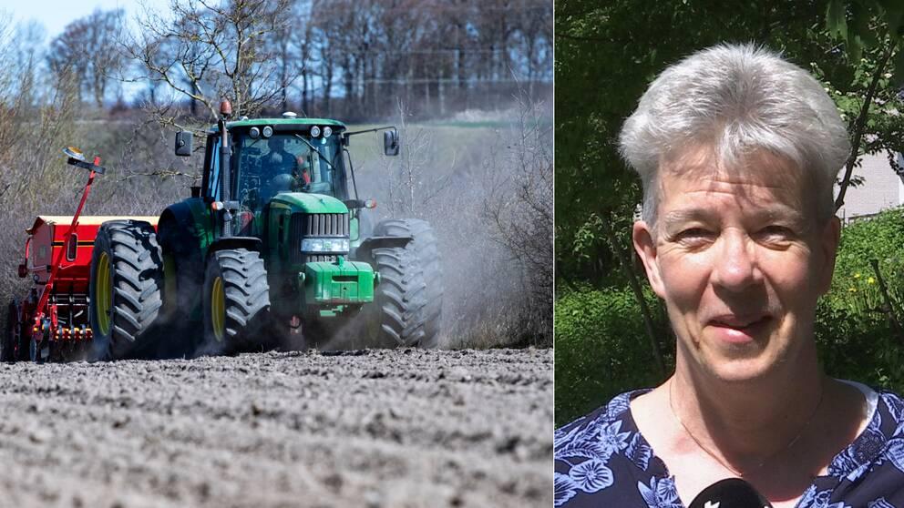 en traktor som drar maskini på åker, samt närbild på medelålders kvinna