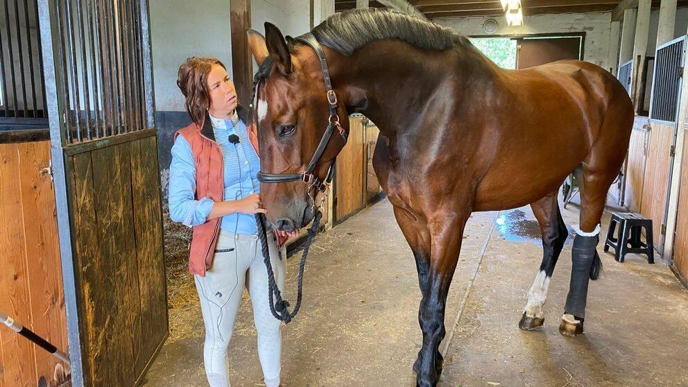 Michelle Olsson håller i sin stora bruna häst, han har ett bandage runt ena bakbenet.