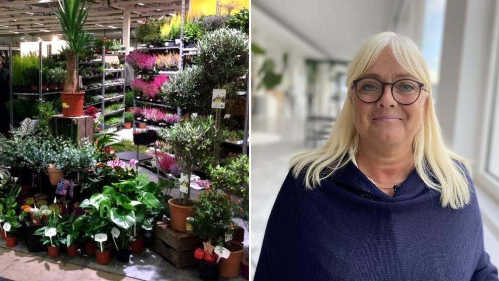 En bild på växtlighet från ett tidigare Elmia Garden och en bild på projektledare Kristina Andersson.