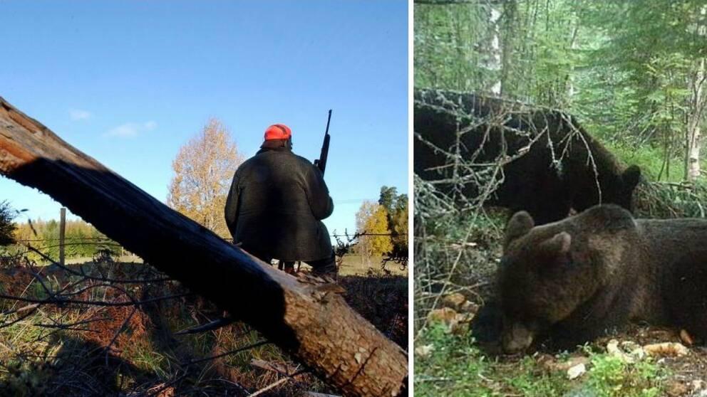 En jägare och en björn.