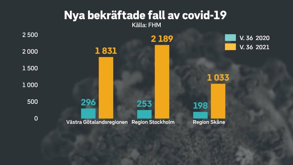 Grafik över antalet nya bekräftade fall.