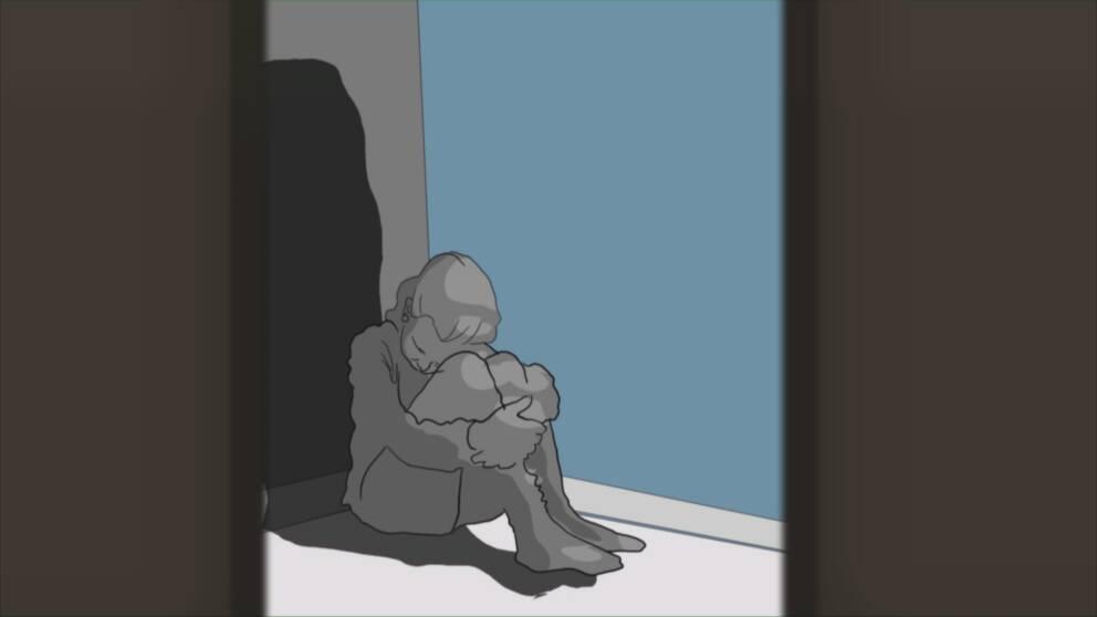 Den familjehemsplacerade flickan misstänks lida av sexuella trauman, något som Per säger att han inte fick någon information om i förväg från socialtjänsten i Halmstad. I klippet hör du hans berättelse.