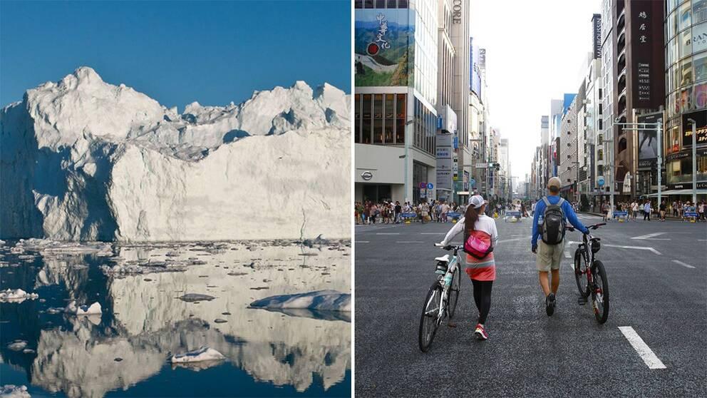 Havsnivåerna stiger och det mesta av vattnet kommer från smältande glaciärer och istäcken.