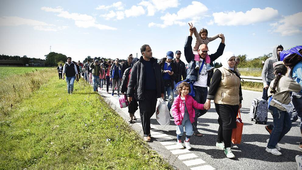 Ett 50-tal flyktingar vandrar genom Danmark.