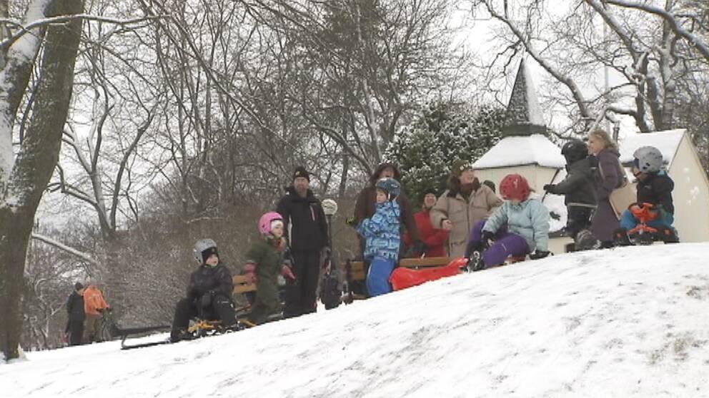 Till slut föll snön även i söder och många gladdes, som här i Stockholmstrakten den 22 januari.