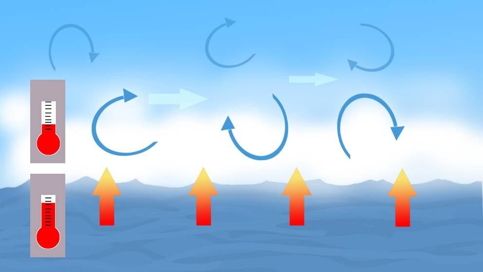 Kall luft över varmt vatten gör att det bildas sjörök.