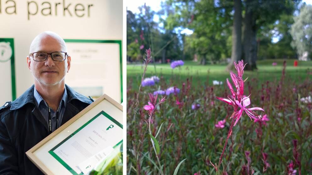 Stadsträdgårdsmästare Thomas Bergström från Nybro kommun tog emot priset.