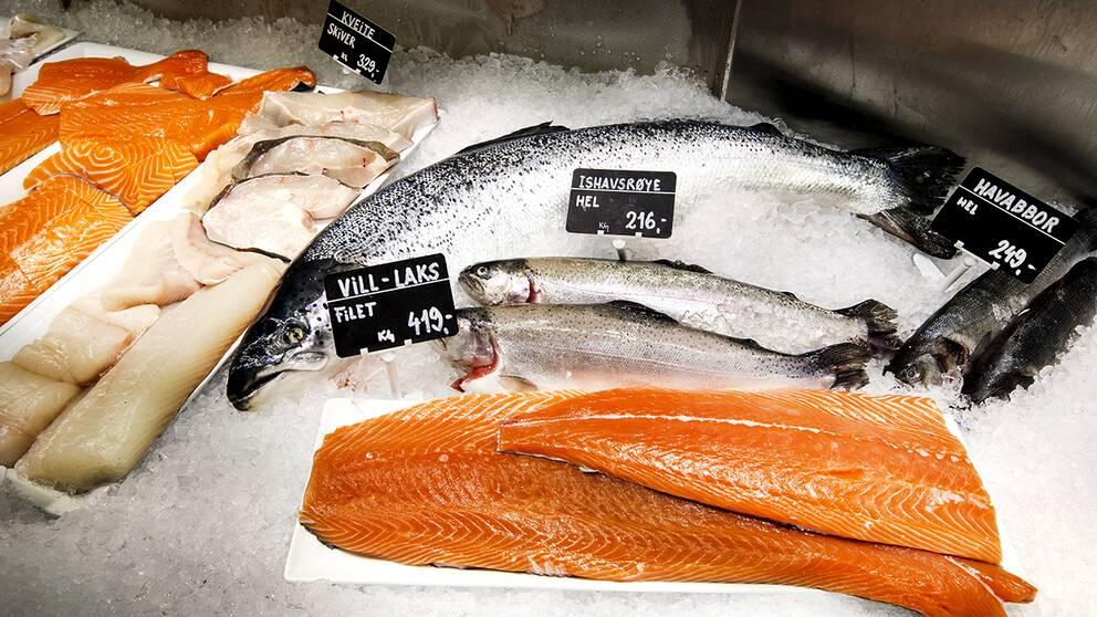 Färsk fisk på isbädd i disk