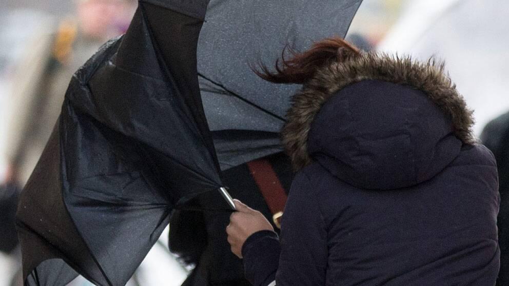 Kvinna stretar med paraply i vinden