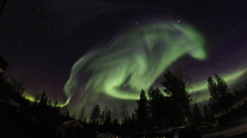 Foto: Marja-Terttu Karlsson