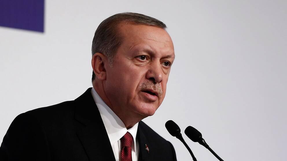 Turkiets president Recep Tayyip Erdoğan nämner Hitlertyskland som ett exempel på ett effektivt politiskt system.