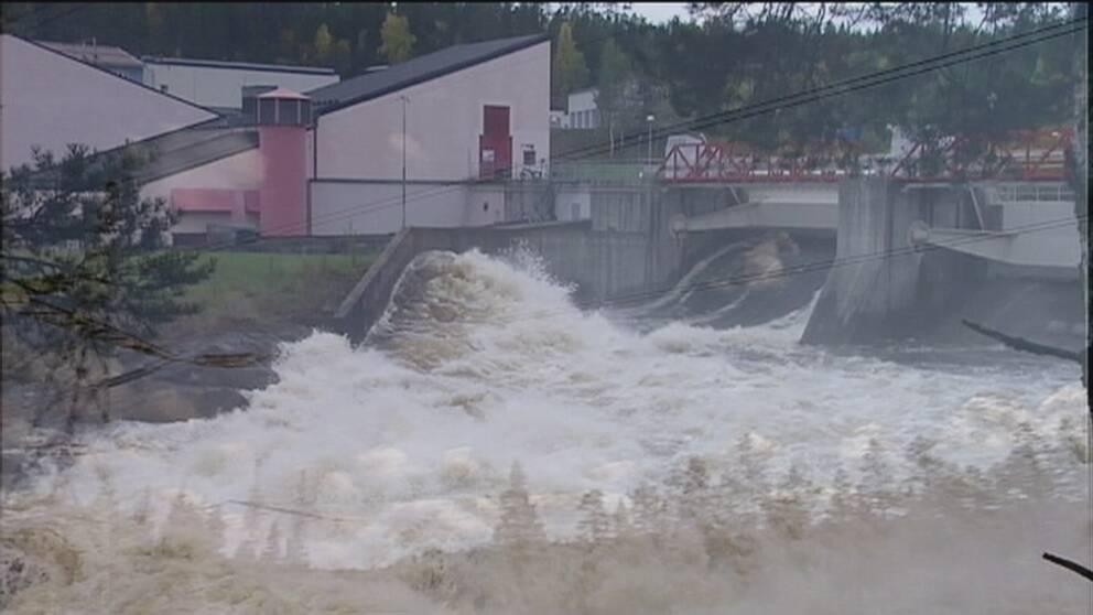 Majoriteten av svenska vattenkraftverk struntar i att bygga fiskvägar.