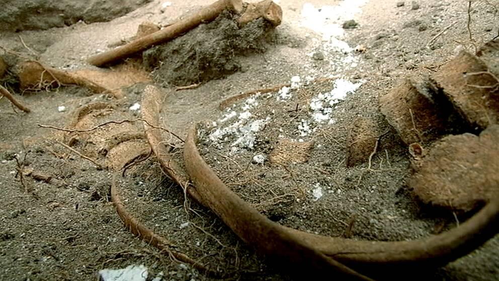 Delar av ett skelett i marken vid hotell i Visby.