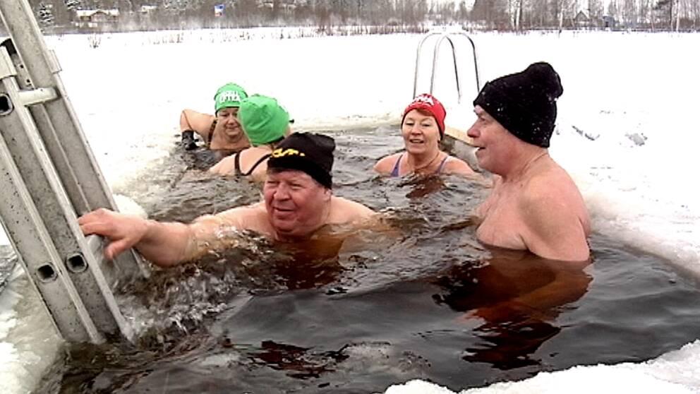 Flera hemmahopp förberedde sig inför Vintersimmet under söndagen med ett träningsdopp.