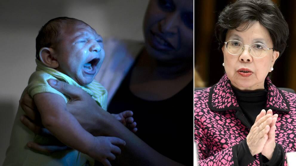 Margaret Chan, generaldirektör meddelade under måndagskvällen att spridningen av det myggburna zikaviruset klassas som internationellt nödläge.