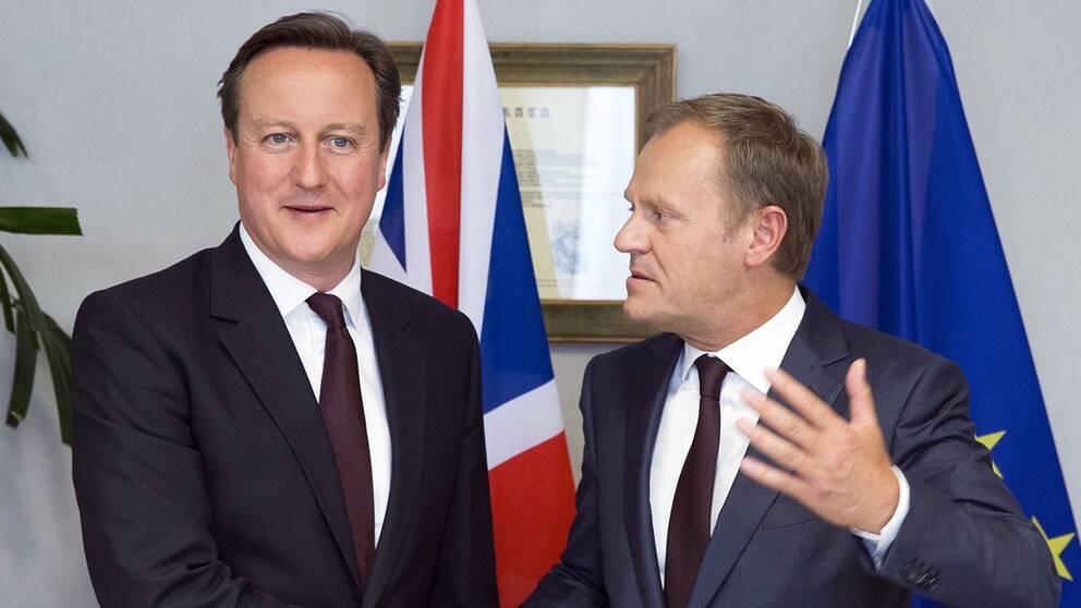 """Storbritanniens premiärminister David Cameron betecknar dagens förslag från EU som en """"framgång"""", men säger samtidigt att mycket arbete återstår."""