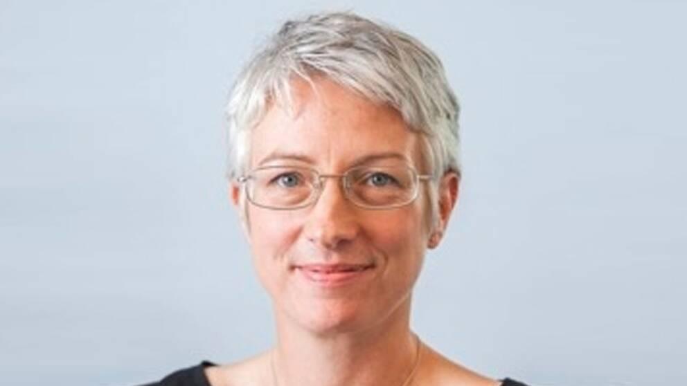 Anna Nyberg är forskare inom stress på Stressforskningsinstitutet på Stockholms universitet.