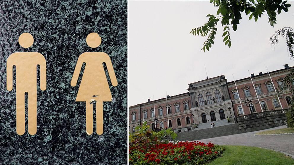 Ångströmlaboratoriet vid Uppsala universitet får en könsneutral toalett, skriver unt.se. Tanken är att alla, oavsett hur de definierar sin könstillhörighet, ska kunna använda sig av den.