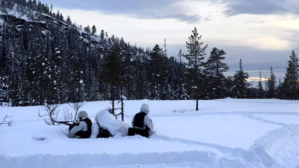 Under tisdagen fick hemvärnssoldaterna från Jämtland bekänna färg.