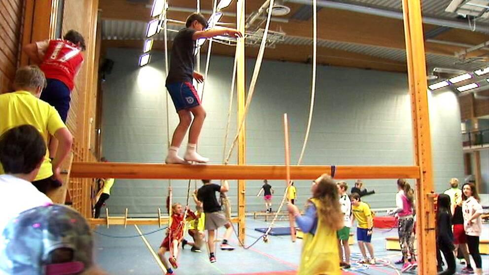 SVT besökte Tyresö skola utanför Stockholm, och där vill eleverna ha mer idrott i skolan.