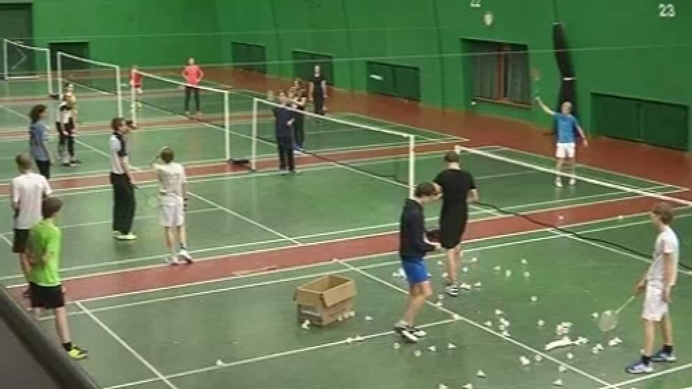 Badmintonbanor