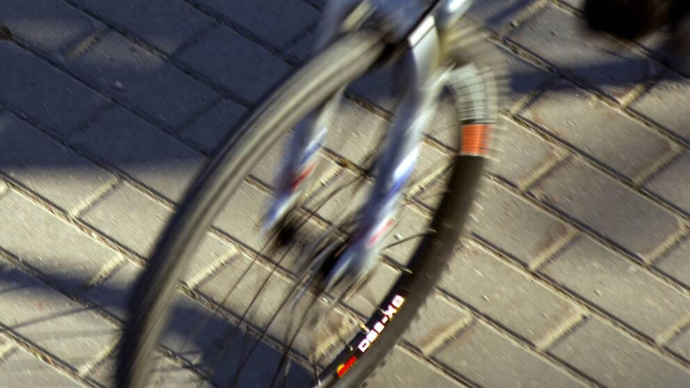 Cyklist korde in i tagbom omkom