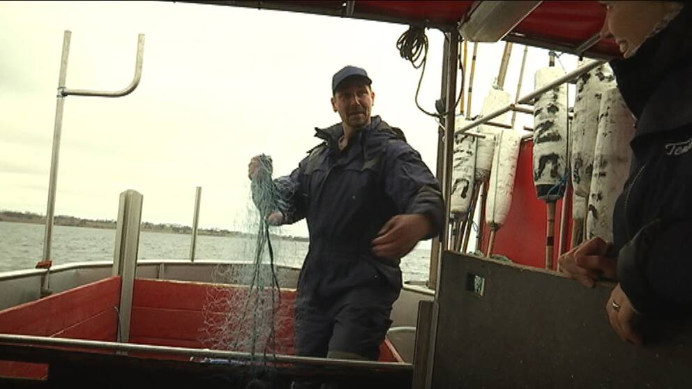 Allt färre småskaliga yrkesfiskare kan överleva på fisket.
