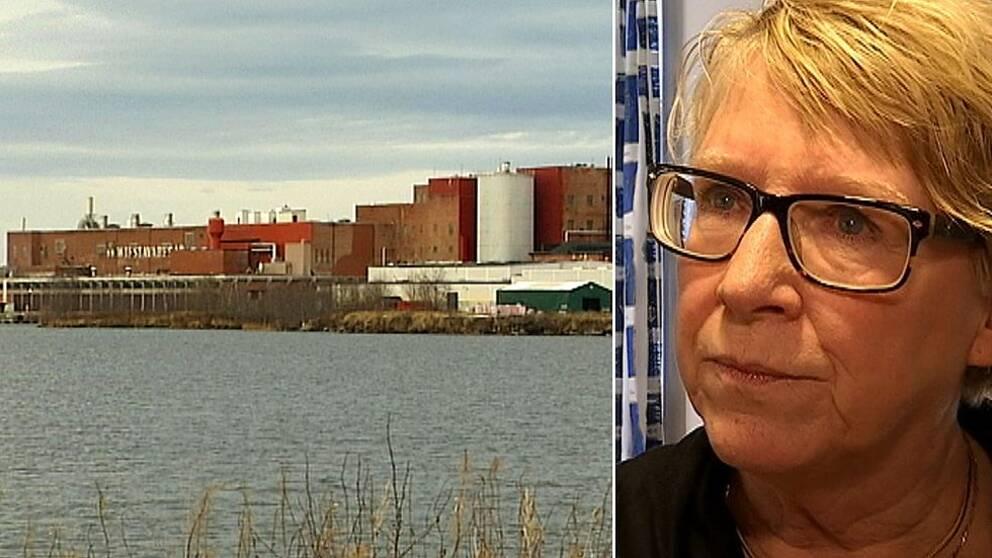 – Vi har fått frågan om att ta emot flykngbåten men tackat nej, säger Timrås kommunalråd Ewa Lindstrand (S).