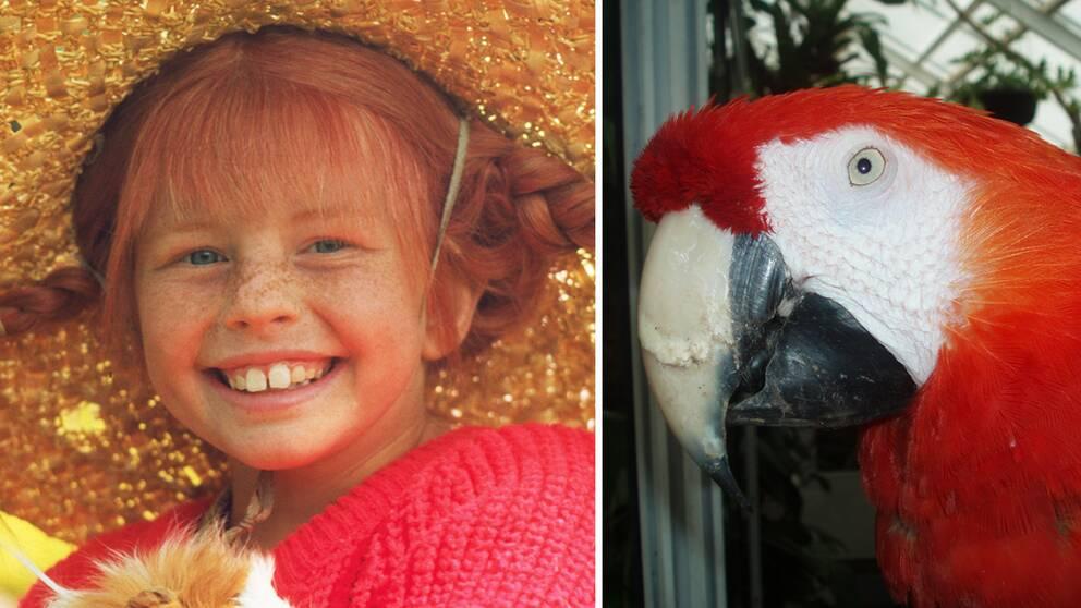 Pippi Långstrump och papegojan Douglas.