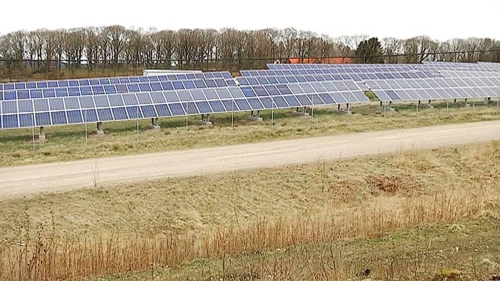 Sveriges i särklass största solkraftspark byggs längs E6 utanför Varberg.