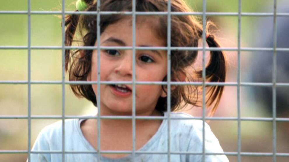En liten flicka bland flyktingarna på serbiska sidan av gränsen mot Ungern.