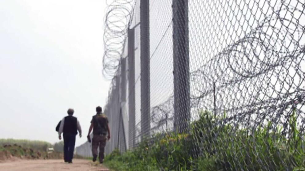 Vid Ungerns gräns mot Serbien patrullerar ett medborgargarde för att stoppa flyktingar som lyckats ta sig genom taggtrådsstängslet.