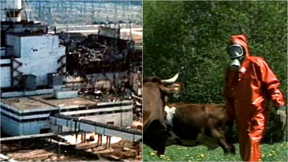 Tjernobyl har startat reaktor pa nytt