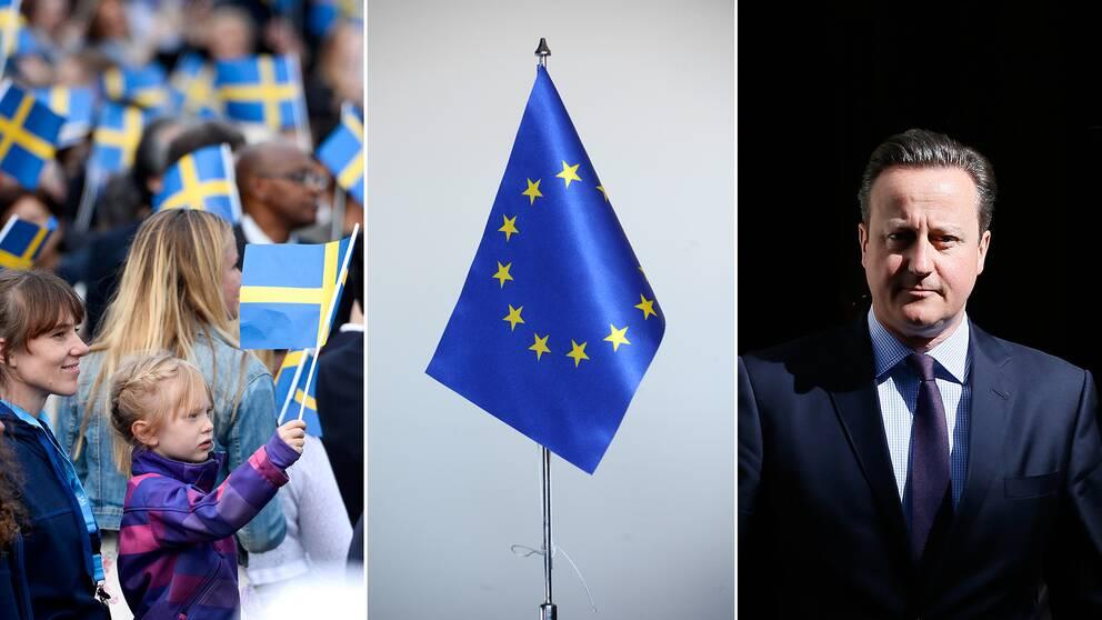 barn som viftar svensk flagga och en eu-flagga samt en bild på Storbritanniens premiärminister David Cameron